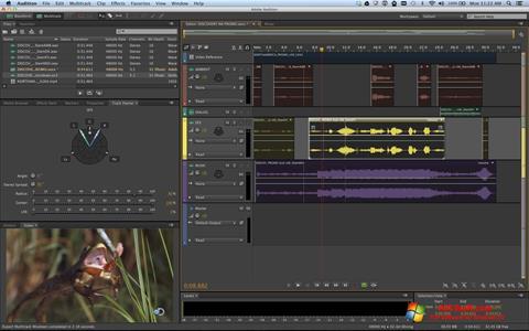 স্ক্রিনশট Adobe Audition Windows 10
